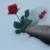 capture-d2019e0301cran-2013-02-23-a0300-16.14.11