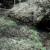 capture-d2019e0301cran-2013-04-17-a0300-16.43.07