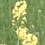 capture-d2019e0301cran-2013-05-20-a0300-12.38.18
