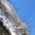 capture-d2019e0301cran-2015-02-13-a0300-15.43.34