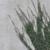 capture-d2019e0301cran-2015-03-01-a0300-11.14.20