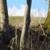 capture-d2019e0301cran-2015-03-07-a0300-18.30.55