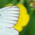 capture-d2019e0301cran-2015-06-07-a0300-00.38.11