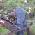 capture-d2019e0301cran-2015-06-12-a0300-23.50.54