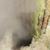 capture-d2019e0301cran-2015-06-30-a0300-16.16.06