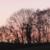 capture-d2019e0301cran-2015-11-14-a0300-16.36.45
