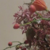 capture-d2019e0301cran-2015-11-28-a0300-18.19.16
